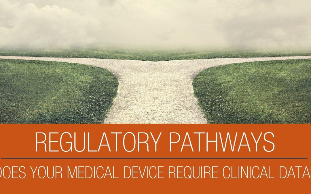 Regulatory Pathway Defines the Need for a Clinical Study